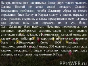 Лагерь повстанцев насчитывал более двух тысяч человек. Однако Исатай не хотел си
