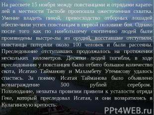 На рассвете 15 ноября между повстанцами и отрядами карателей в местности Та