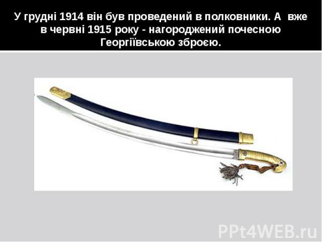 У грудні 1914 він був проведений в полковники. А вже в червні 1915 року - нагороджений почесною Георгіївською зброєю.