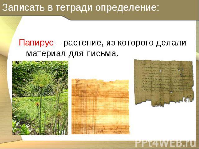 Папирус – растение, из которого делали материал для письма. Папирус – растение, из которого делали материал для письма.