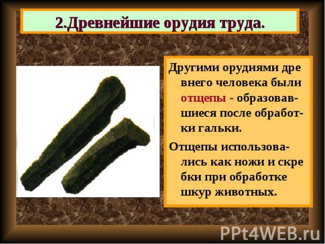 Другими орудиями дре внего человека были отщепы - образовав-шиеся после обработ-ки гальки. Другими орудиями дре внего человека были отщепы - образовав-шиеся после обработ-ки гальки. Отщепы использова-лись как ножи и скре бки при обработке шкур животных.