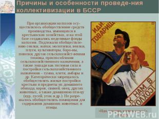Причины и особенности проведе-ния коллективизации в БССР При организации колхозо