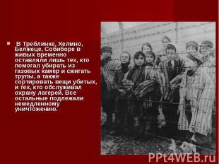 В Треблинке, Хелмно, Белжеце, Собиборе в живых временно оставляли лишь тех, кто