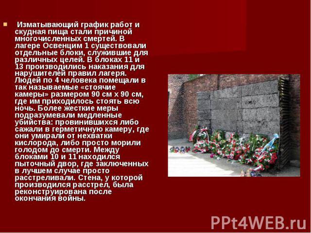 Изматывающий график работ и скудная пища стали причиной многочисленных смертей. В лагере Освенцим 1 существовали отдельные блоки, служившие для различных целей. В блоках 11 и 13 производились наказания для нарушителей правил лагеря. Людей по 4 челов…
