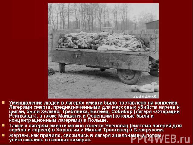 Умерщвление людей в лагерях смерти было поставлено на конвейер. Лагерями смерти, предназначенными для массовых убийств евреев и цыган, были Хелмно, Треблинка, Белжец, Собибор (лагеря «Операции Рейнхард»), а также Майданек и Освенцим (которые были и …
