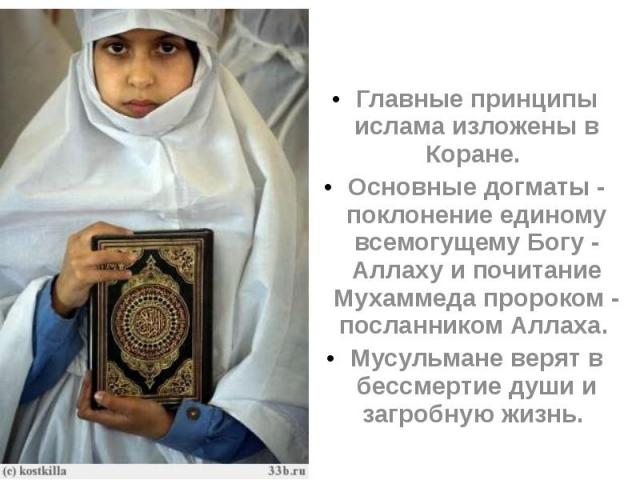 Главные принципы ислама изложены в Коране. Главные принципы ислама изложены в Коране. Основные догматы - поклонение единому всемогущему Богу - Аллаху и почитание Мухаммеда пророком - посланником Аллаха. Мусульмане верят в бессмертие души и загробную…