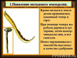 Кроме мотыги в земле-делии применялись каменный топор и серп. Кроме мотыги в зем