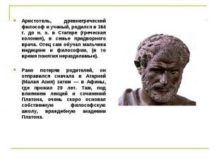 Аристотель, древнегреческий философ и ученый, родился в 384 г. до н. э. в Стагир