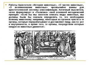Работы Аристотеля «История животных», «О частях животных», «О возникновении живо