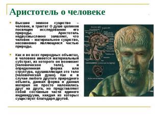 Аристотель о человеке Высшее земное существо – человек, и трактат О душе целиком