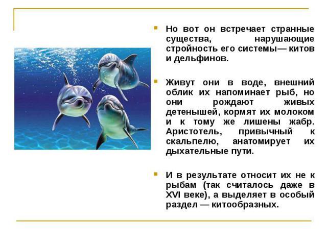 Но вот он встречает странные существа, нарушающие стройность его системы— китов и дельфинов. Но вот он встречает странные существа, нарушающие стройность его системы— китов и дельфинов. Живут они в воде, внешний облик их напоминает рыб, но они рожда…