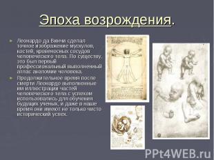 Эпоха возрождения. Леонардо да Винчи сделал точное изображение мускулов, костей,
