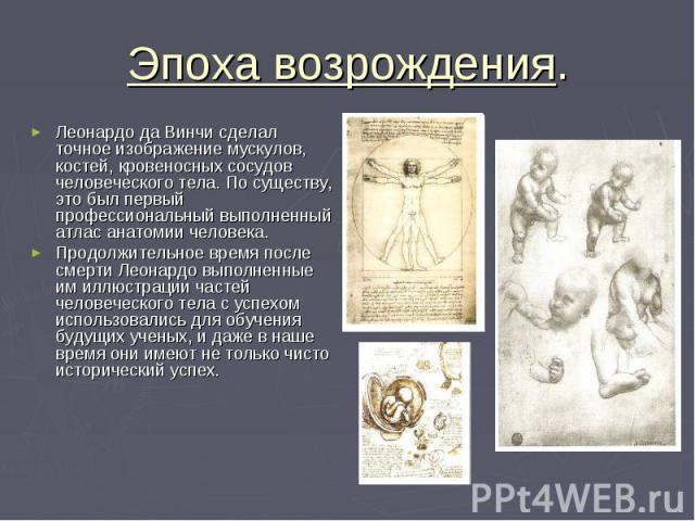 Эпоха возрождения. Леонардо да Винчи сделал точное изображение мускулов, костей, кровеносных сосудов человеческого тела. По существу, это был первый профессиональный выполненный атлас анатомии человека. Продолжительное время после смерти Леонардо вы…