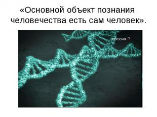 «Основной объект познания человечества есть сам человек».
