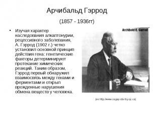 Арчибальд Гэррод (1857 - 1936гг) Изучая характер наследования алкаптонурии, реце