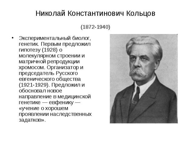 Николай Константинович Кольцов (1872-1940) Экспериментальный биолог, генетик. Первым предложил гипотезу (1928) о молекулярном строении и матричной репродукции хромосом. Организатор и председатель Русского евгенического общества (1921-1929). Предложи…