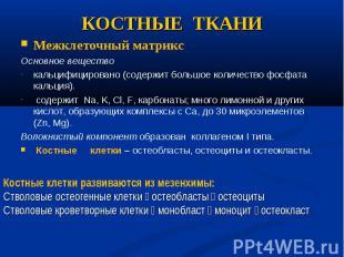Межклеточный матрикс Межклеточный матрикс Основное вещество кальцифицировано (со