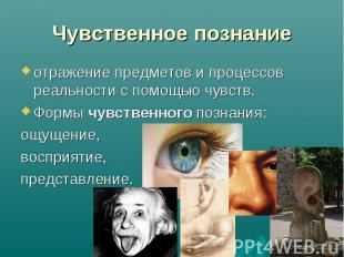 Чувственное познание отражение предметов и процессов реальности с помощью чувств