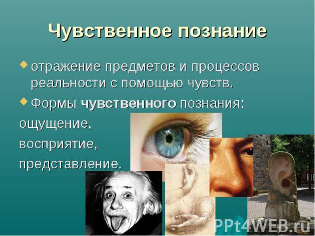 Чувственное познание отражение предметов и процессов реальности с помощью чувств. Формы чувственного познания: ощущение, восприятие, представление.