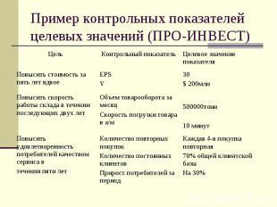 Пример контрольных показателей целевых значений (ПРО-ИНВЕСТ)