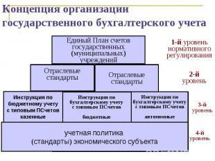 Концепция организации государственного бухгалтерского учета