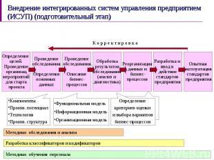 Внедрение интегрированных систем управления предприятием (ИСУП) (подготовительны