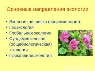 Экология человека (социоэкология) Экология человека (социоэкология) Геоэкология