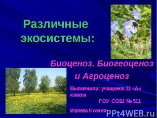 Различные экосистемы: Биоценоз. Биогеоценоз и Агроценоз