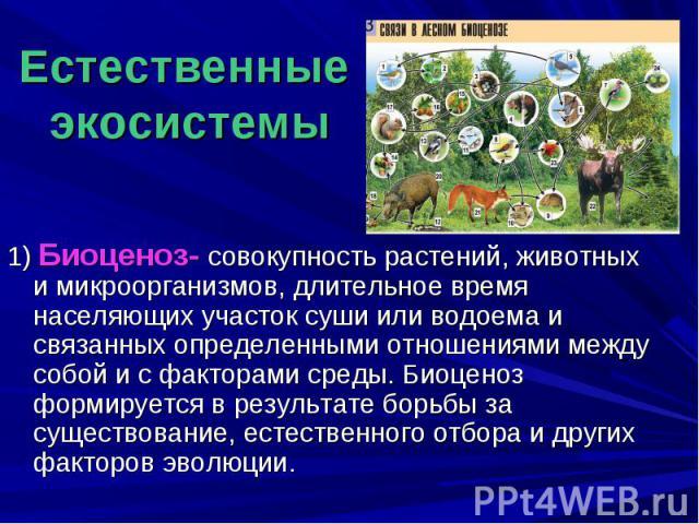 Естественные экосистемы 1) Биоценоз- совокупность растений, животных и микроорганизмов, длительное время населяющих участок суши или водоема и связанных определенными отношениями между собой и с факторами среды. Биоценоз формируется в результате бор…