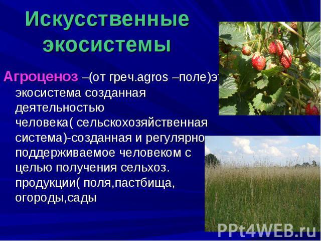 Искусственные экосистемы Агроценоз –(от греч.agros –поле)это экосистема созданная деятельностью человека( сельскохозяйственная система)-созданная и регулярно поддерживаемое человеком с целью получения сельхоз. продукции( поля,пастбища, огороды,сады