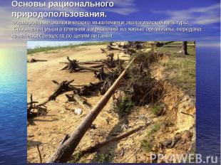 Основы рационального природопользования. Формирование экологического мышления и