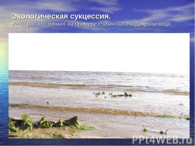 Экологическая сукцессия. Уч-ся рассматривают на примере Рыбинского водохранилища.