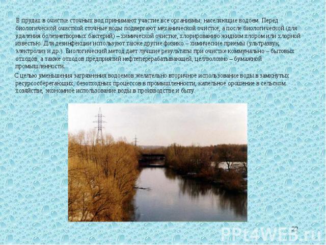 В прудах в очистке сточных вод принимают участие все организмы, населяющие водоем. Перед биологической очисткой сточные воды подвергают механической очистке, а после биологической (для удаления болезнетворных бактерий) – химической очистке, хлориров…