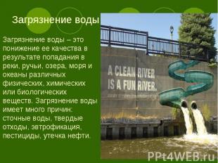 Загрязнение воды – это понижение ее качества в результате попадания в реки, ручь