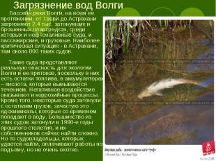 Бассейн реки Волги, на всем ее протяжении, от Твери до Астрахани загрязняют 2,4