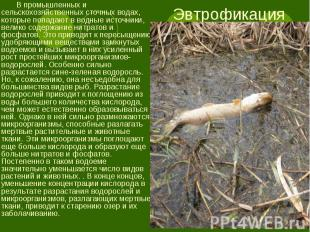 В промышленных и сельскохозяйственных сточных водах, которые попадают в водные и