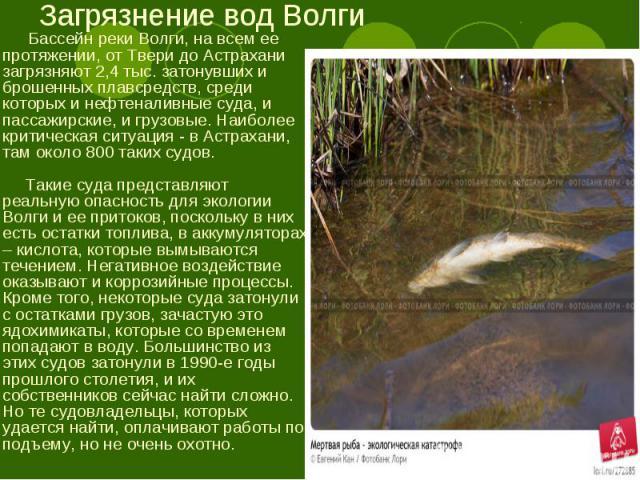 Бассейн реки Волги, на всем ее протяжении, от Твери до Астрахани загрязняют 2,4 тыс. затонувших и брошенных плавсредств, среди которых и нефтеналивные суда, и пассажирские, и грузовые. Наиболее критическая ситуация - в Астрахани, там около 800 таких…