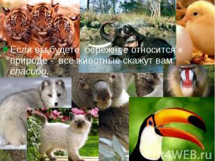 Если вы будете бережнее относится к природе - все животные скажут вам спасибо. Е