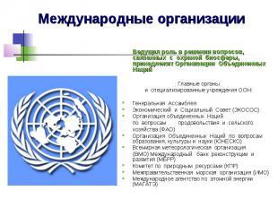 Международные организации Ведущая роль в решении вопросов, связанных с&nbs