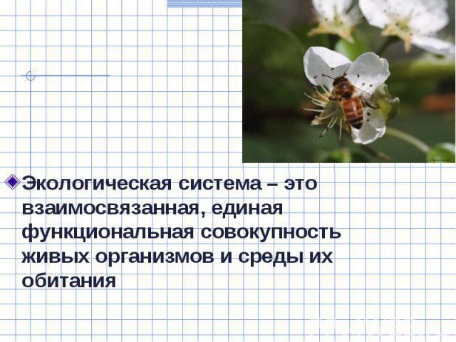 Экологическая система – это взаимосвязанная, единая функциональная совокупность живых организмов и среды их обитания Экологическая система – это взаимосвязанная, единая функциональная совокупность живых организмов и среды их обитания