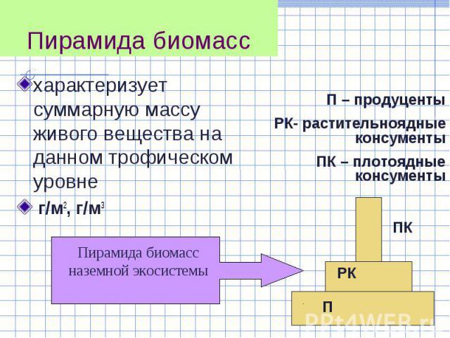характеризует суммарную массу живого вещества на данном трофическом уровне характеризует суммарную массу живого вещества на данном трофическом уровне г/м2, г/м3