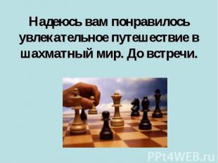 Надеюсь вам понравилось увлекательное путешествие в шахматный мир. До встречи.