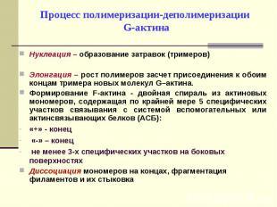Нуклеация – образование затравок (тримеров) Нуклеация – образование затравок (тр