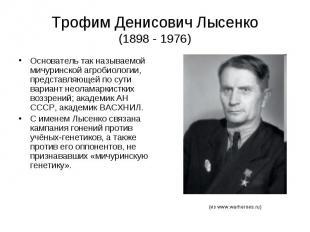Трофим Денисович Лысенко (1898 - 1976) Основатель так называемой мичуринской агр