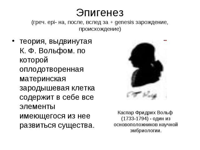 Эпигенез (греч. epi- на, после, вслед за + genesis зарождение, происхождение) теория, выдвинутая К. Ф. Вольфом. по которой оплодотворенная материнская зародышевая клетка содержит в себе все элементы имеющегося из нее развиться существа.