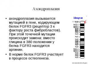 Ахондроплазия ахондроплазия вызывается мутацией в гене, кодирующем белок FGFR3 (