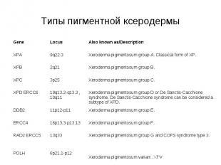 Типы пигментной ксеродермы