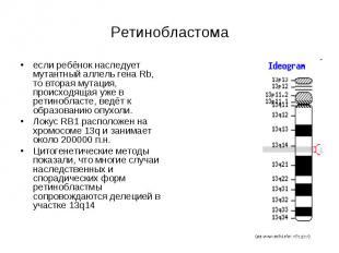 Ретинобластома если ребёнок наследует мутантный аллель гена Rb, то вторая мутаци