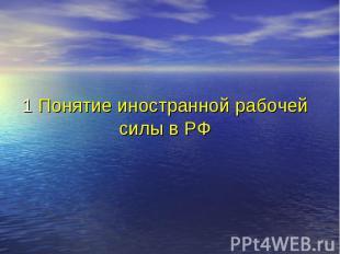 1 Понятие иностранной рабочей силы в РФ