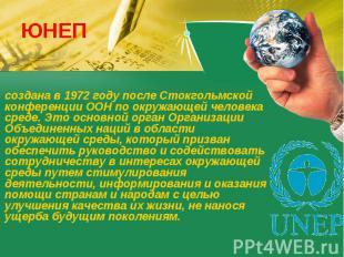 ЮНЕП создана в 1972 году после Стокгольмской конференции ООН по окружающей челов